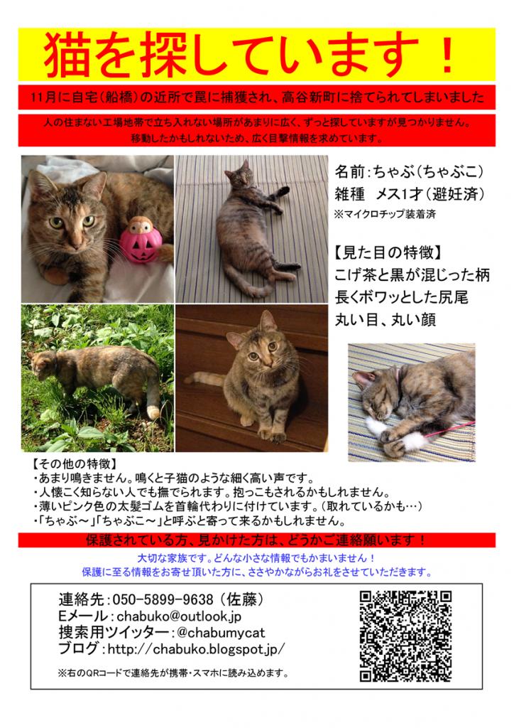 迷い猫捜索用チラシ 無料Excelテンプレート使ってください