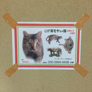 迷い猫捜索用ポスターチラシの貼り方